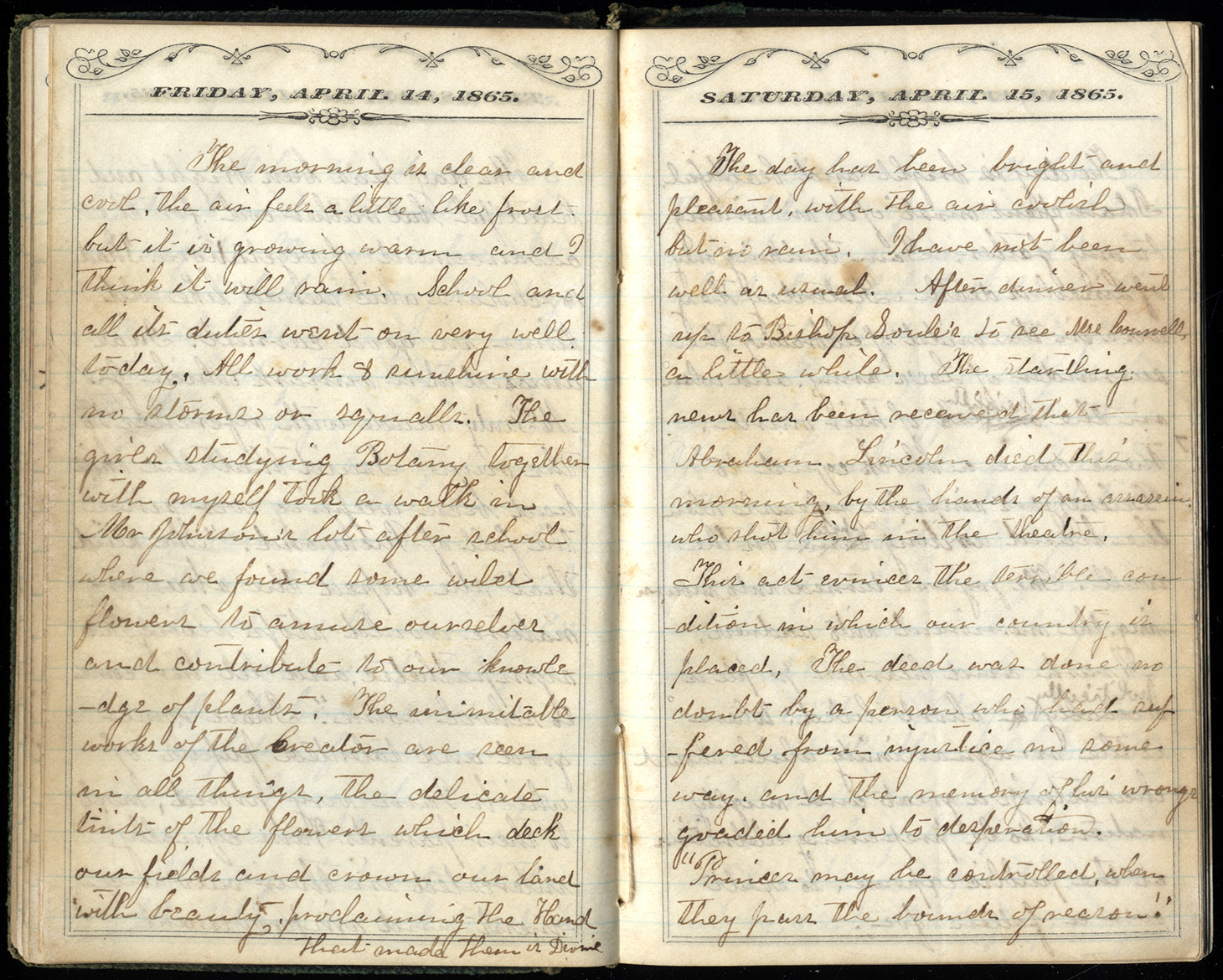 Abigail M. Brook's Diary